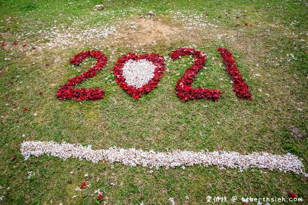 2021桃園客家桐花祭4/24~5/30等你來賞花 @桃園起風了!